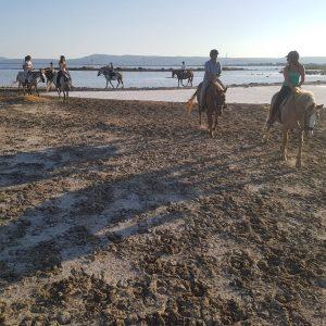 Escursione a cavallo Saline di Santa Caterina