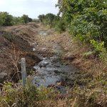 Avvio interventi di manutenzione ordinaria dei corsi d'acqua.